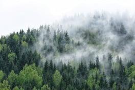 impact-plastics-anti-fog-additives-packaging.jpg