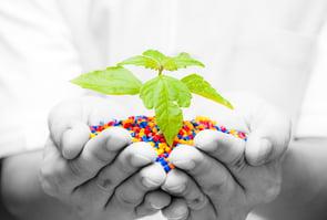 Polypropylene Sustainability